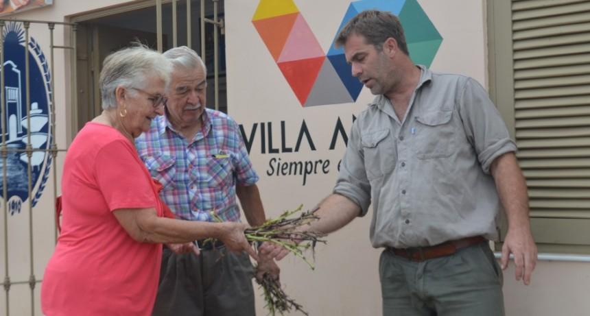 AGENCIA DE DESARROLLO LOCAL HACE ENTREGA GRATUITA DE ESTACAS DE BATATA