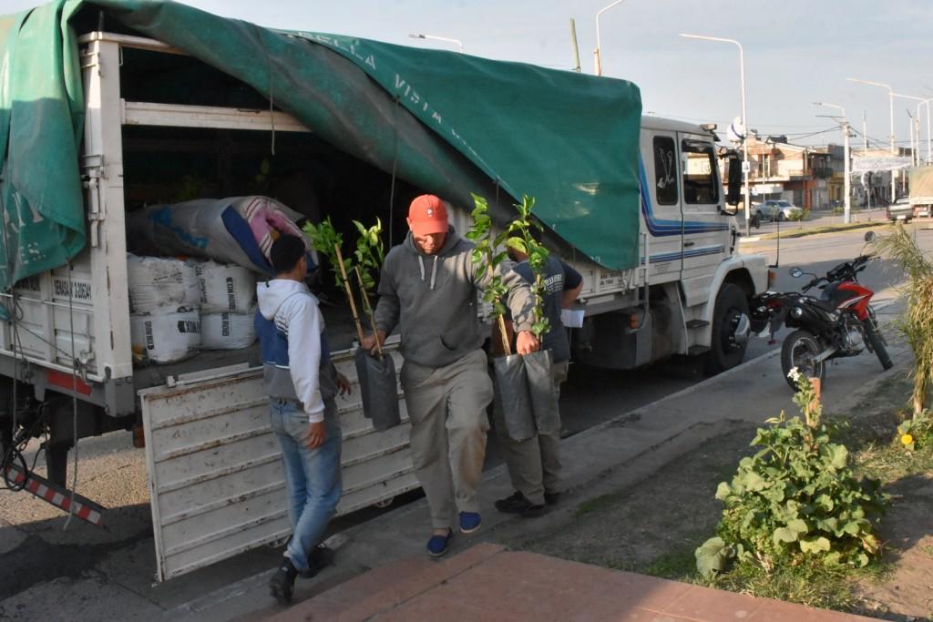 MUNICIPIO REALIZA VENTA DE PLANTINES DE CÍTRICOS