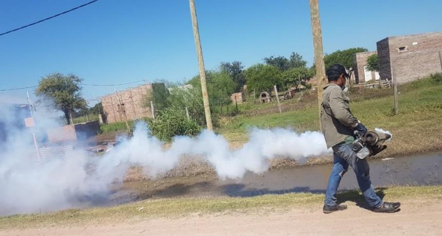 EL MUNICIPIO CONTINÚA REALIZANDO FUMIGACIONES PARA REPELER LOS MOSQUITOS DESPUÉS DE LAS INTENSAS LLUVIAS